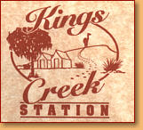 Kings Creek Station - Accommodation NSW