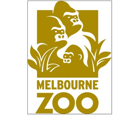 Melbourne Zoo - Accommodation NSW