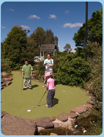 Wetlands Mini Golf - Accommodation NSW