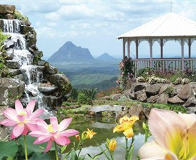 Maleny Botanic Gardens - Accommodation NSW