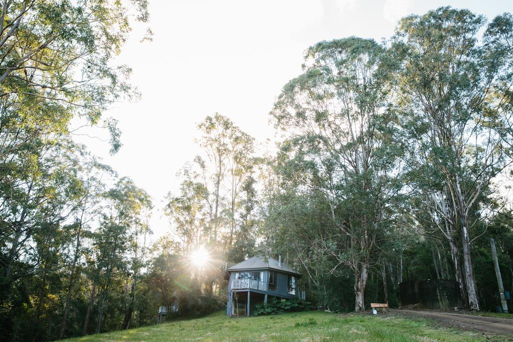 Bluegums Cabins - Accommodation NSW